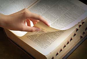 Теорія літератури. Тропи як спеціальні засоби образності мови
